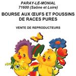 Bourse aux œufs et poussins de races pures à Paray le Monial (71), le samedi 25 avril 2015
