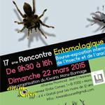 17 ème Rencontre entomologique à Mons (Belgique), le dimanche 22 mars 2015