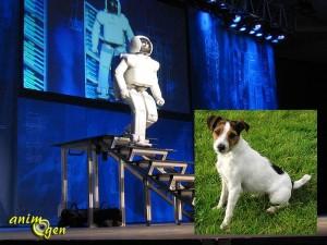 Le robot social à l'épreuve du chien