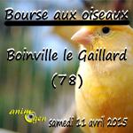Bourse aux oiseaux à Boinville le Gaillard (78), le samedi 11 avril 2015