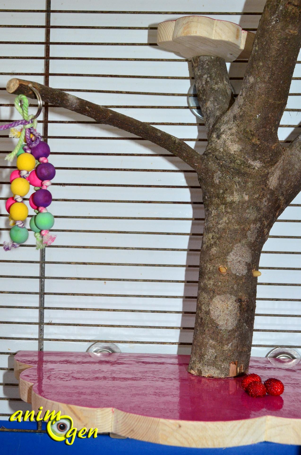 accessoire pour rongeurs faites pousser un arbre sur un nuage fabrication tutoriel prix. Black Bedroom Furniture Sets. Home Design Ideas