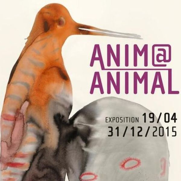 Exposition Anima Animal à Saint Riquier (80), du 19 avril au 31 décembre 2015