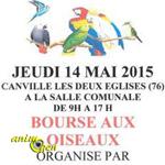 Bourse aux oiseaux à Canville les deux Eglises (76), le jeudi 14 mai 2015