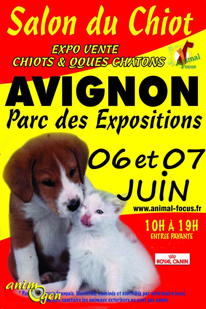 Salon Animal Focus en Avignon (84), du samedi 06 au dimanche 07 juin 2015