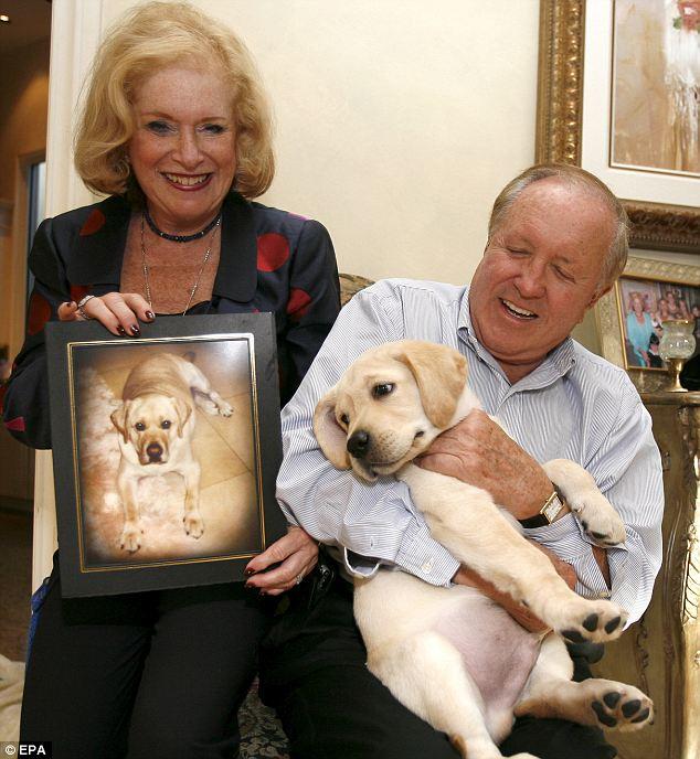 Le clonage des chiens, une nouvelle vie après la mort