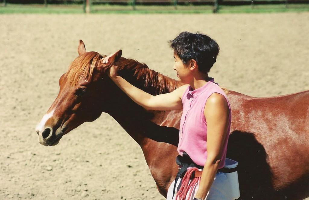 Comment désensibiliser les oreilles d'un cheval ?