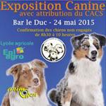Exposition canine à Bar le Duc (55), le dimanche 24 mai 2015