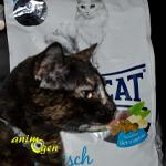 Alimentation : croquettes pour chat Happy Cat Seefish, aux bananes et aux figues (test, avis, prix)