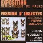 """Exposition """"Passion d'insectes"""" à Maurs (15), du mardi 02 juin au samedi 04 juillet 2015"""