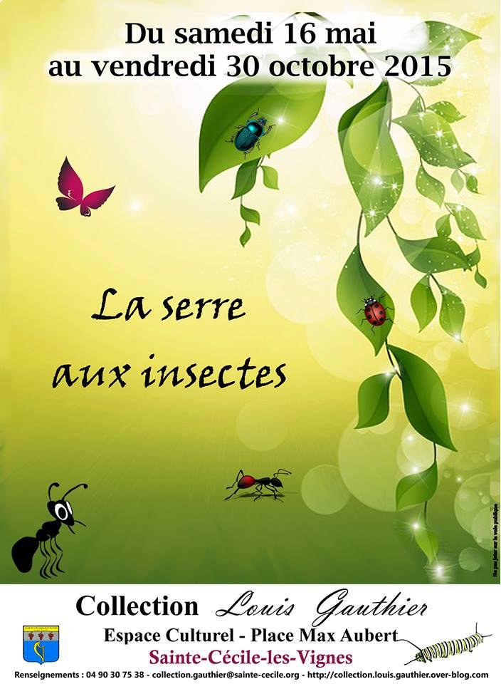 """Exposition """"la Serre aux insectes"""" à Sainte Cécile les vignes (84), du samedi 16 mai au vendredi 30 octobre 2015"""