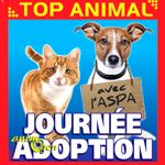 Journée d'adoption à Manosque (04), le samedi 05 juillet 2015