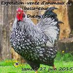 Exposition-vente d'animaux de basse-cour à Ducey (50), le samedi 27 juin 2015