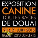 Exposition canine toutes races à Douai (59), du samedi 20 au dimanche 21 juin 2015