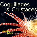 """Exposition """"Coquillages et Crustacés"""" à Lons le Saunier (39), du vendredi 29 mai au dimanche 29 novembre 2015"""