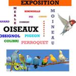 Exposition d'oiseaux flûte alors à Vals d'Aix Isable (42), du mardi 12 mai au vendredi 31 juillet 2015