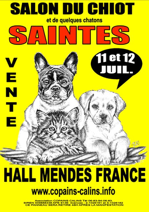 Salon du chiot et du chaton animaliades saintes 17 for Salon des chiots