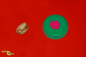 Fabriquez un jouet pour rongeurs avec un bouchon (test, avis, prix)