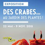 """Exposition """"Des crabes au Jardin des Plantes !"""" à Paris (75), du vendredi 22 mai au lundi 09 novembre 2015"""