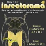 31 ème Bourse Internationale d'Entomologie « Insectorama » à Seraing (Belgique), le dimanche 25 octobre 2015