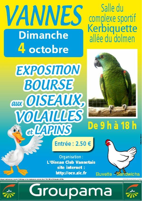 Exposition et Bourse aux oiseaux à Vannes (56), le dimanche 04 octobre 2015