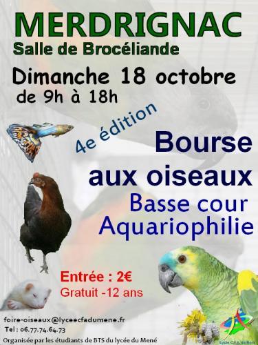 Bourse aux oiseaux, basse-cour et aquariophilie à Merdrignac (22), le dimanche 18 octobre 2015