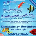 15 ème Bourse Aquariophile à Montauban (82), le dimanche 1 er novembre 2015