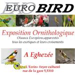 Eurobird à Eghezée (Belgique), du samedi 28 au dimanche 29 novembre 2015