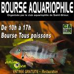 Bourse aquariophile à Saint Brieuc (22), le dimanche 15 novembre 2015