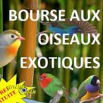 Bourse aux oiseaux exotiques à Roques sur Garonne (31), le samedi 14 novembre 2015