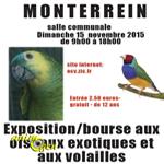 Exposition-Bourse d'oiseaux exotiques et volailles à Monterrein (56), le dimanche 15 novembre 2015