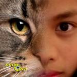 Science : un logiciel pour voir le monde à travers les yeux de nos animaux