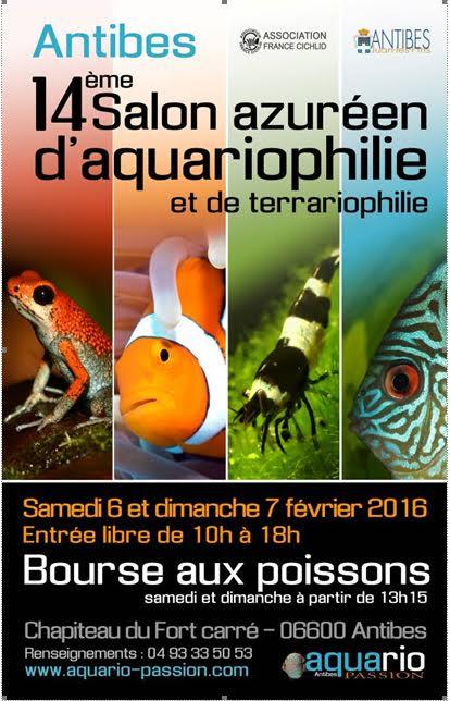 14 me salon azur en d aquariophilie et de terrariophilie for Vente aquariophilie