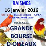 Grande Bourse d'Oiseaux à Raismes (59), le dimanche 16 janvier 2016