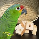 Un sapin sous le signe de la nature pour nos perroquets, lapins et rongeurs (tutoriel, test, avis, prix)