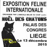 Exposition Féline Internationale à Liège (Belgique), le dimanche 13 décembre 2015