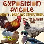 26 ème Exposition Avicole à Niort (79), du samedi 23 au dimanche 24 janvier 2016