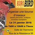 Exposition ornithologique Eurobird à Theux (Belgique), le dimanche31 janvier 2016