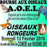 Bourse aux oiseaux à Condé sur Huisne (61), le samedi 13 février 2016