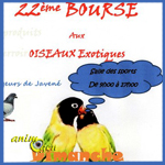 32 ème Bourse aux oiseaux exotiques à Beaucé (35), le dimanche 07 février 2016