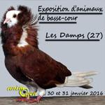 Exposition d'animaux de basse-cour aux Damps (27), du samedi 30 au dimanche 31 janvier 2016