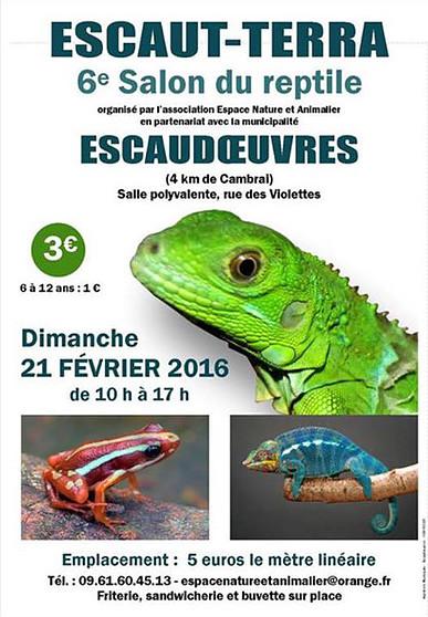 6 ème Salon terrariophile Escaut-Terra à Escaudoeuvres (59), le dimanche 21 février 2016