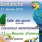 13 ème Bourse d'oiseaux à Colleville Montgomery (14), le dimanche 21 février 2016