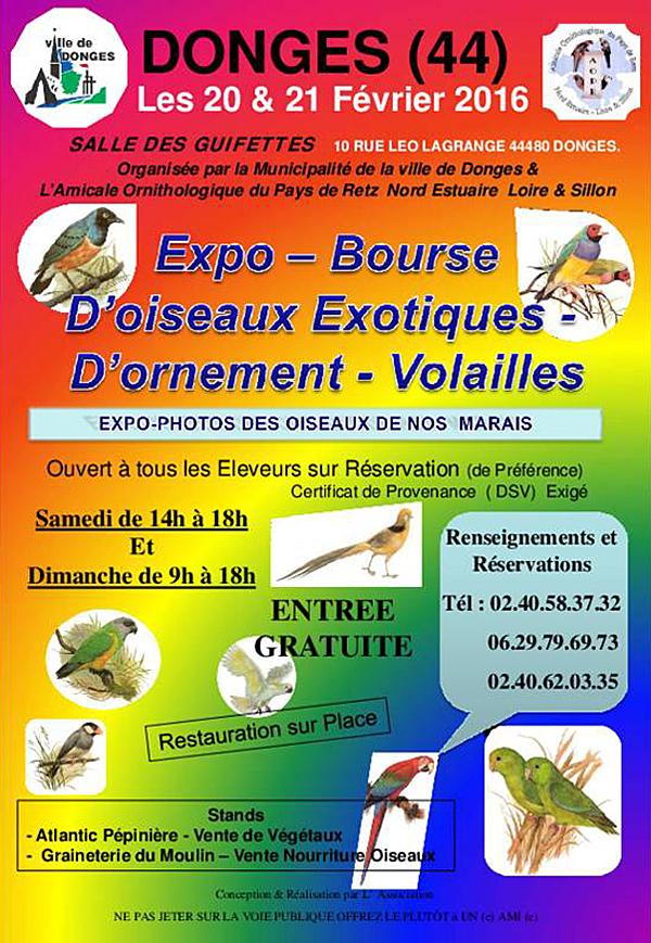 Expo-Bourse d'oiseaux exotiques, d'ornement et volailles à Donges (44), du samedi 20 au dimanche 21 février 2016