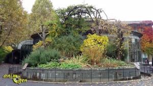 Le bien-être de la Ménagerie du Jardin des Plantes