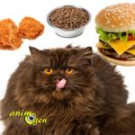 Alimentation et comportement : manger avec modération rend les chats plus affectueux