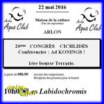 Congrès Cichlidés et Bourse Terrario à Arlon (Belgique), le dimanche 20 mai 2016