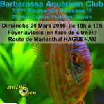 33 ème Bourse aux poissons à Haguenau (67), le dimanche 20 mars 2016