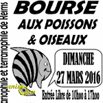 66 ème Bourse aux poissons, oiseaux et matériels à Reims (51), le dimanche 27 mars 2016