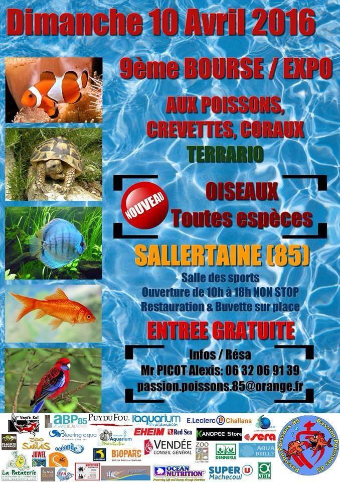 9 ème Bourse aux poissons, crevettes, coraux, terrario et oiseaux à Sallertaine (85), le dimanche 10 avril 2016