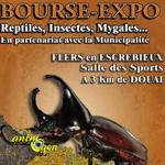 Bourse-exposition d'insectes et reptiles à Flers en Escrebieux (59), le dimanche 24 avril 2016